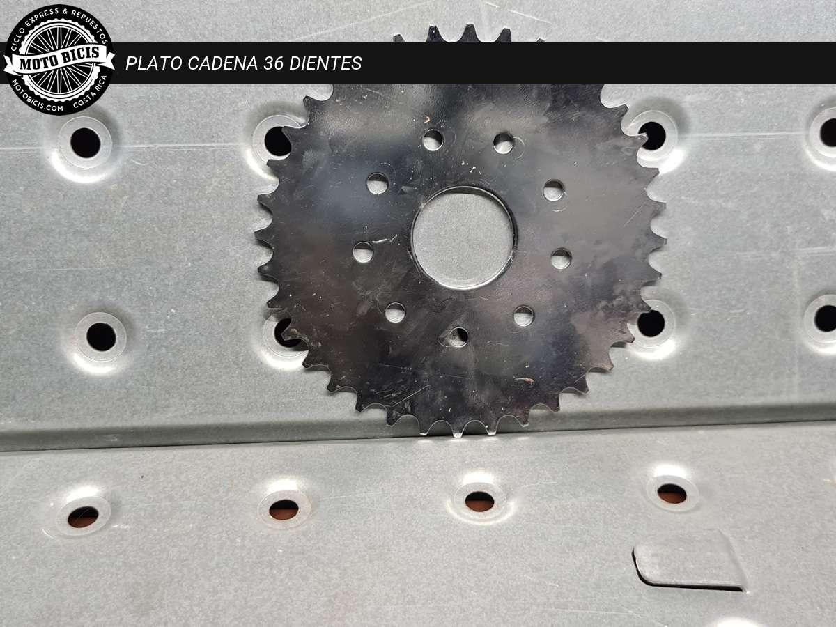 PLATO CADENA 36 DIENTES